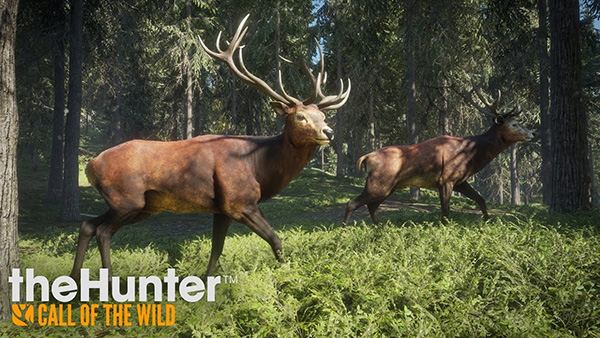 Game The Hunter: Call of the Wild
